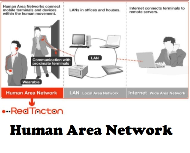 human area network Human activity recognition using body area sensor networks by bo xu bachelor of science in electronic engineering university of.